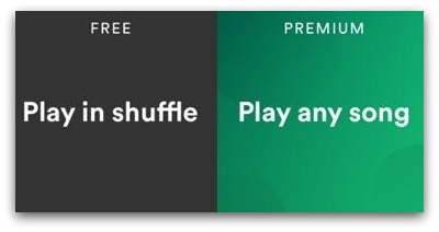 Spotify premium accounts